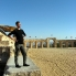 Jerash2
