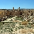 Jerash8