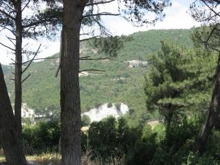 lattakia3.jpg